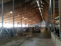 Click on Agri-Light Free Stall Barn Lighting